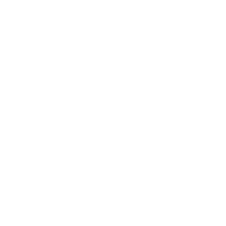logo formal plus